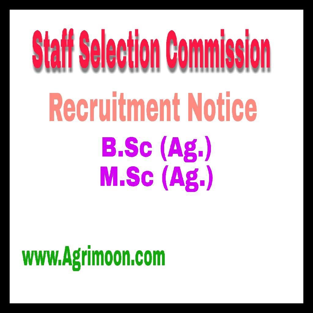 ssc recruitment 2017 notification pdf